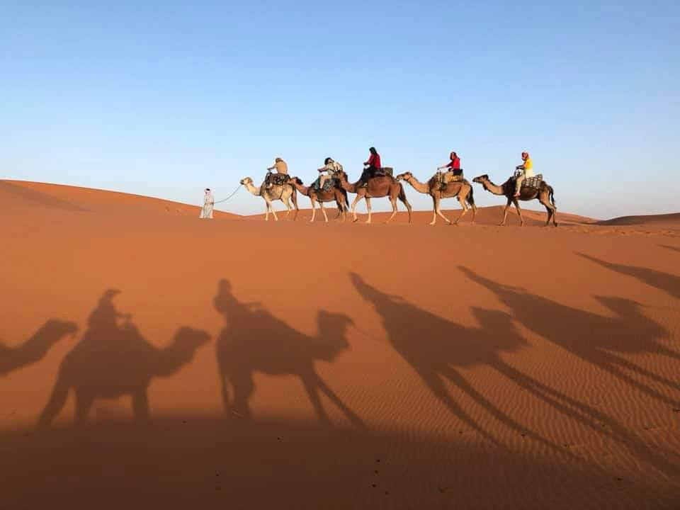 Camel riders on the sahara with their shadow