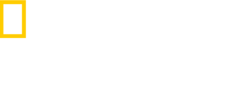 National Geographic Journeys logo