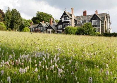 Plas Dinam gardens Wales