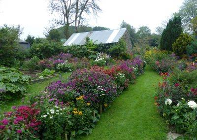 Private home garden in Wales