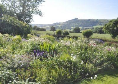 White hopton farm Wales